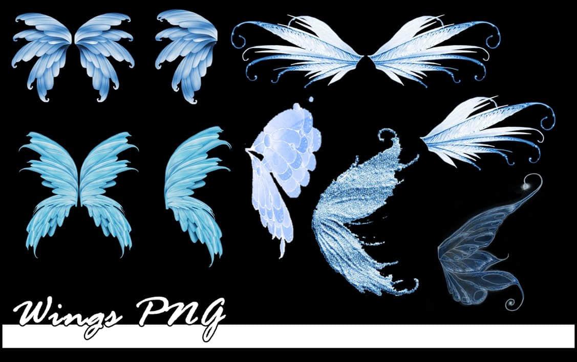 梦幻的精灵、妖精、花仙子翅膀美图秀秀png素材