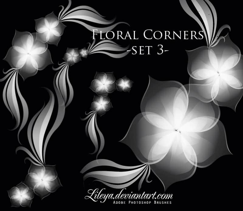 漂亮的梦幻花朵、鲜花装饰图案photoshop笔刷素材