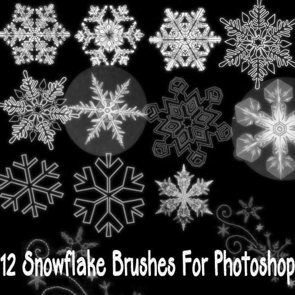 漂亮的雪花花纹、冰晶图案photoshop笔刷素材 雪花笔刷 雪笔刷 冰晶笔刷  flowers brushes background brushes