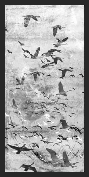 大雁南飞、鸟群背景图案photoshop笔刷素材