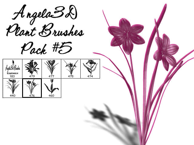 CG野草鲜花photoshop笔刷素材 #.2 野花笔刷 CG笔刷  plants brushes