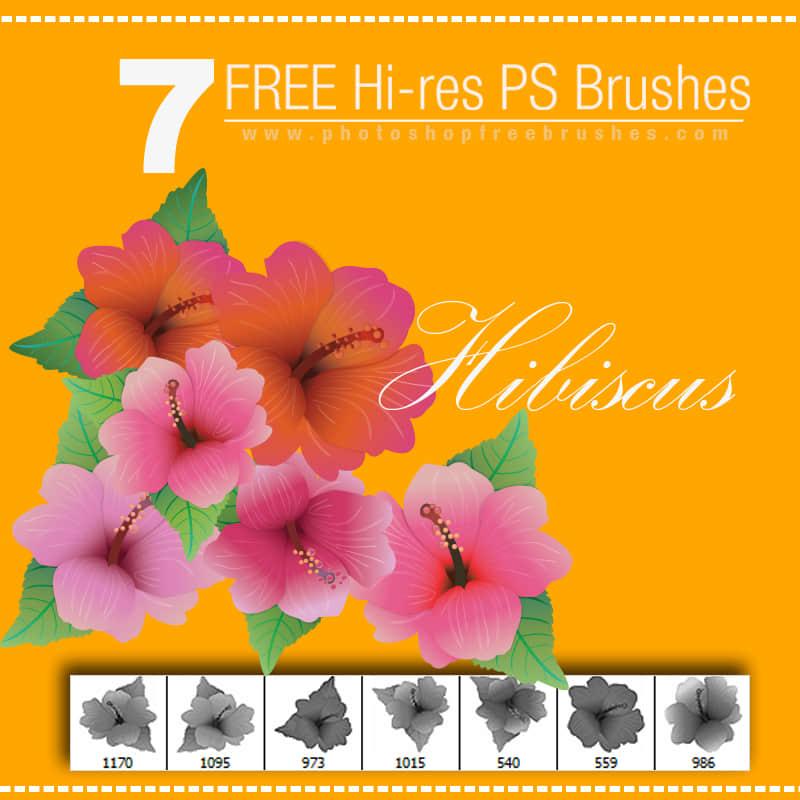7种鲜艳漂亮的花朵Photoshop笔刷