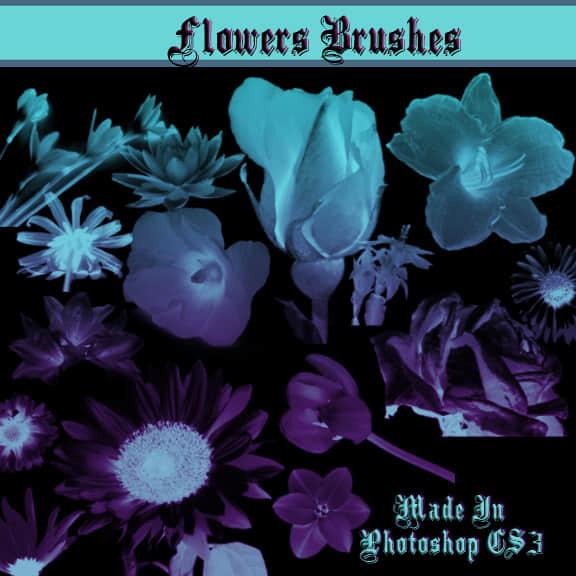 鲜花Photoshop笔刷素材
