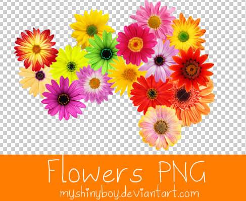 已扣!七彩鲜艳鲜花花朵图片【美图秀秀素材包】
