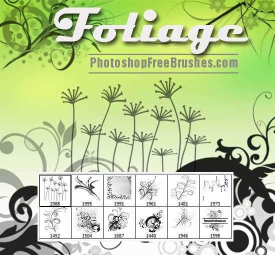 手绘优雅植物花纹图案Photoshop笔刷素材