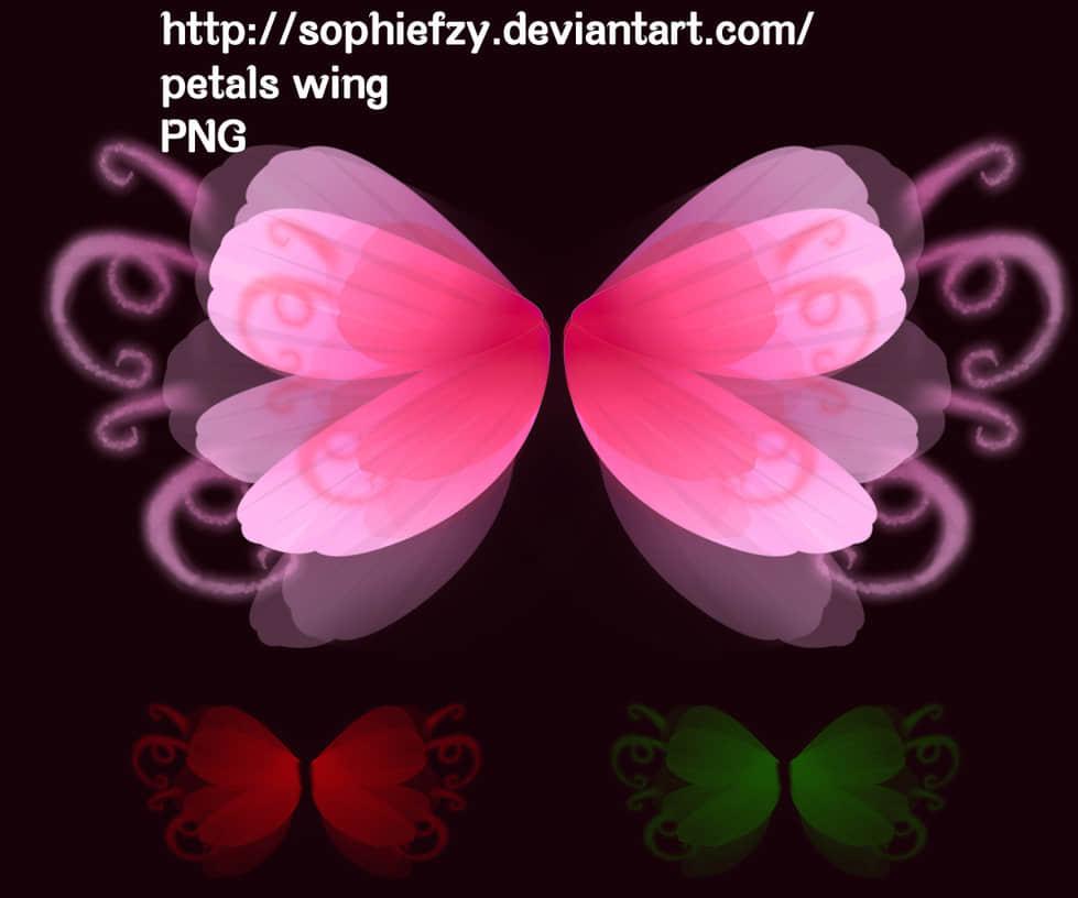 漂亮的花瓣翅膀Photoshop笔刷素材