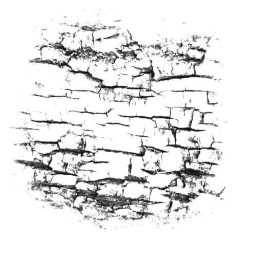 木材、木头表皮纹理、皱纹Photoshop笔刷