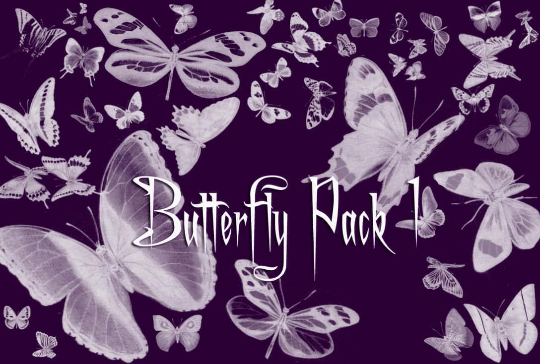 18个蝴蝶PS笔刷打包下载