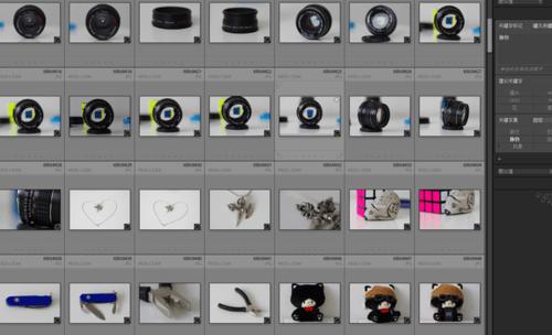 快速整理100G照片神器!Adobe Photoshop Lightroom 奥多比又一款精品软件
