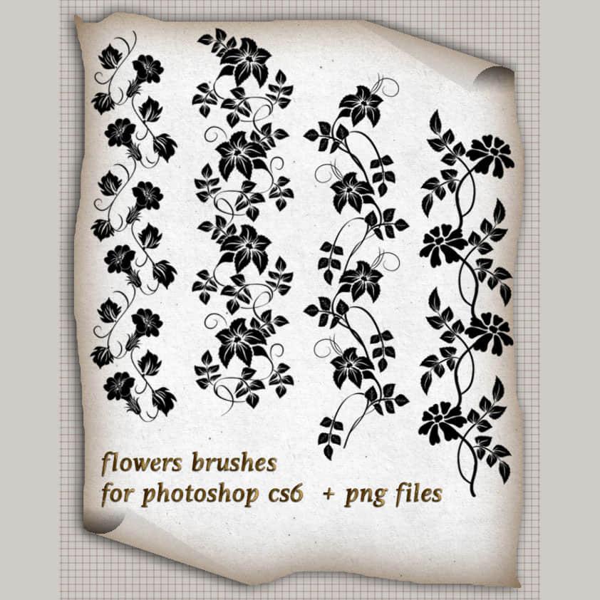 藤蔓式喇叭花植物花纹Photoshop美图笔刷