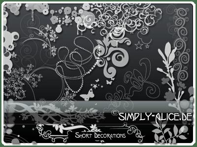 漂亮的植物花纹照片美图背景边框饰品PS笔刷 #.14