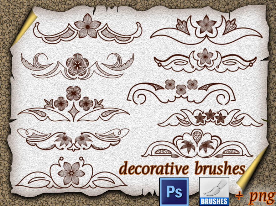 装饰性植物花纹图案Photoshop美图笔刷