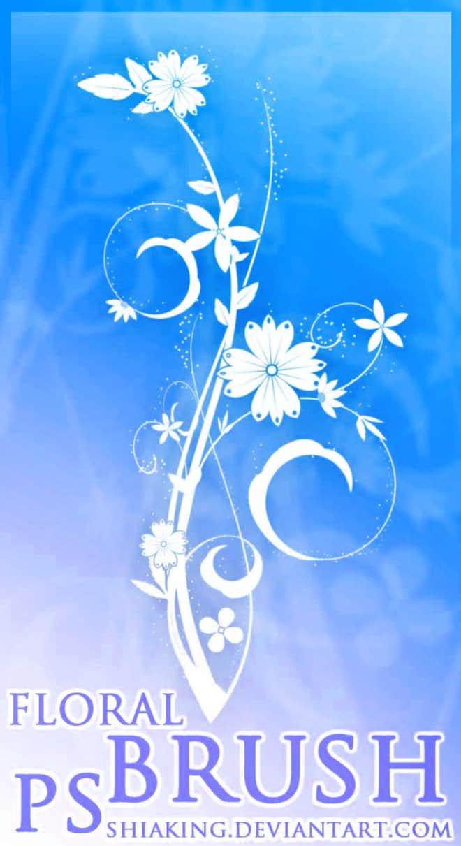 漂亮的植物花纹照片美图背景边框饰品PS笔刷 #.26