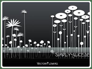 漂亮的植物花纹照片美图背景边框饰品PS笔刷 #.19