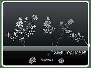 漂亮的植物花纹照片美图背景边框饰品PS笔刷 #.20