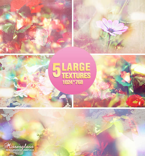 5张光影植物背景装饰图片素材下载