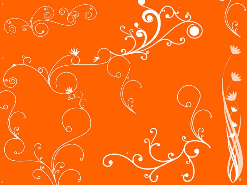 漂亮的植物艺术漩涡花纹图案PS美图笔刷