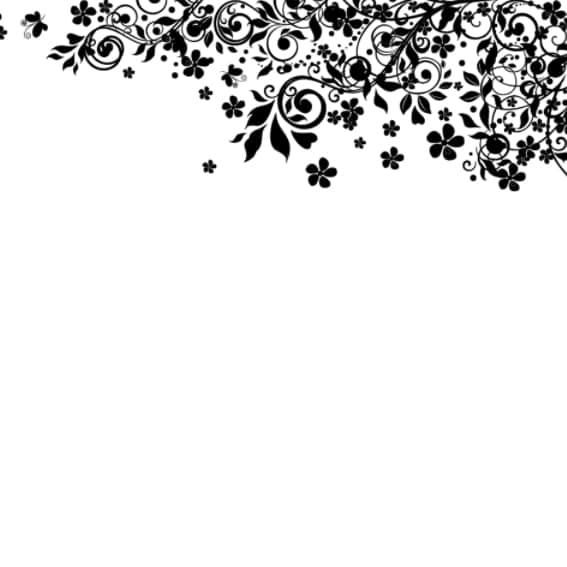 漂亮的植物花纹照片美化素材Photoshop笔刷