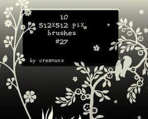 漂亮的植物花纹照片美图背景边框饰品PS笔刷 #.69