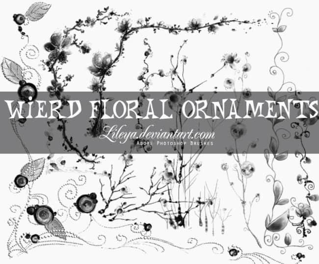 漂亮的植物花纹照片美图背景边框饰品PS笔刷 #.68