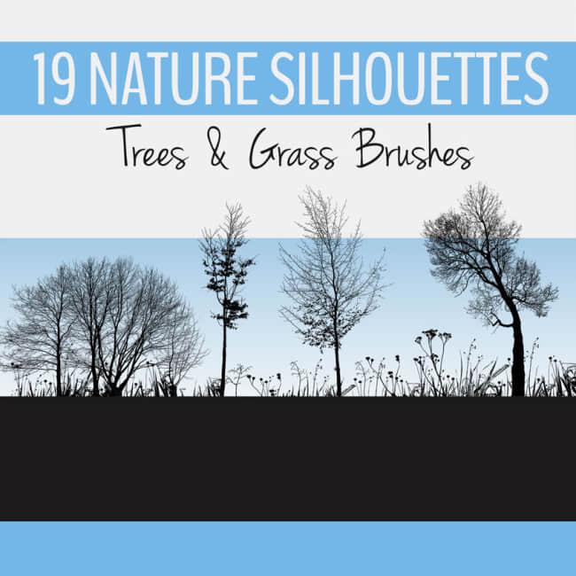 19种树木剪影Photoshop笔刷素材
