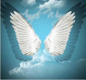天使羽翼翅膀Photoshop美图笔刷素材下载