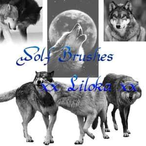 狼素材Photoshop动物笔刷 #.3