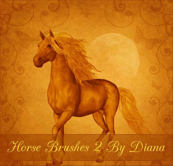 手绘骏马、马匹图案Photoshop笔刷素材