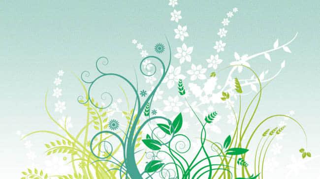 漂亮优雅的植物花纹图案Photoshop笔刷素材下载