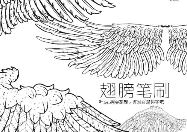 手绘精美的线框式Photoshop翅膀笔刷
