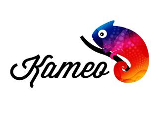 20个颜色靓丽的蜥蜴造型logo标志设计
