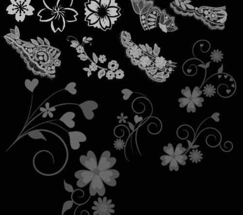 植物花纹与蕾丝花纹Photoshop笔刷