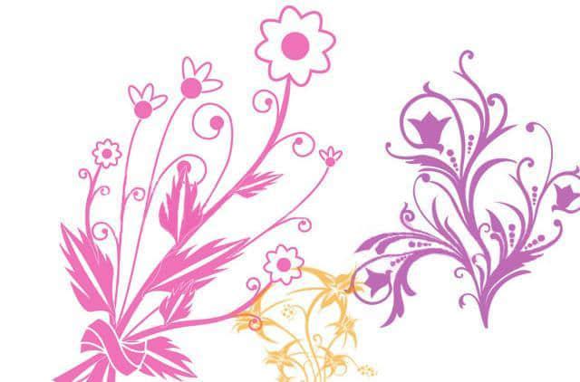 漂亮的植物花纹照片美图背景边框饰品PS笔刷 #.75