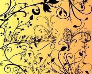 漂亮的植物花纹照片美图背景边框饰品PS笔刷 #.70