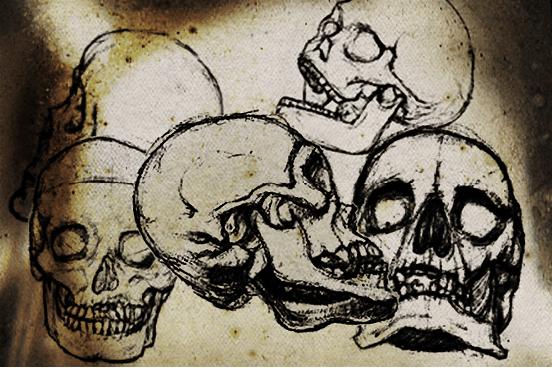 恐怖骷髅头素描图案PS笔刷