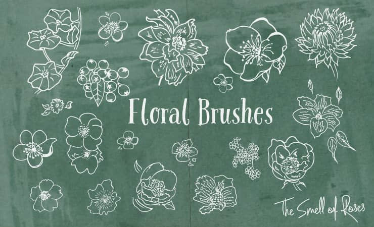 手绘盛开的鲜花花朵Photoshop笔刷