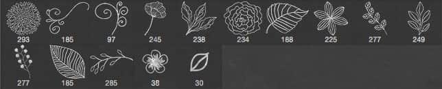 小清新手绘花朵、枝条绿叶Photoshop笔刷素材