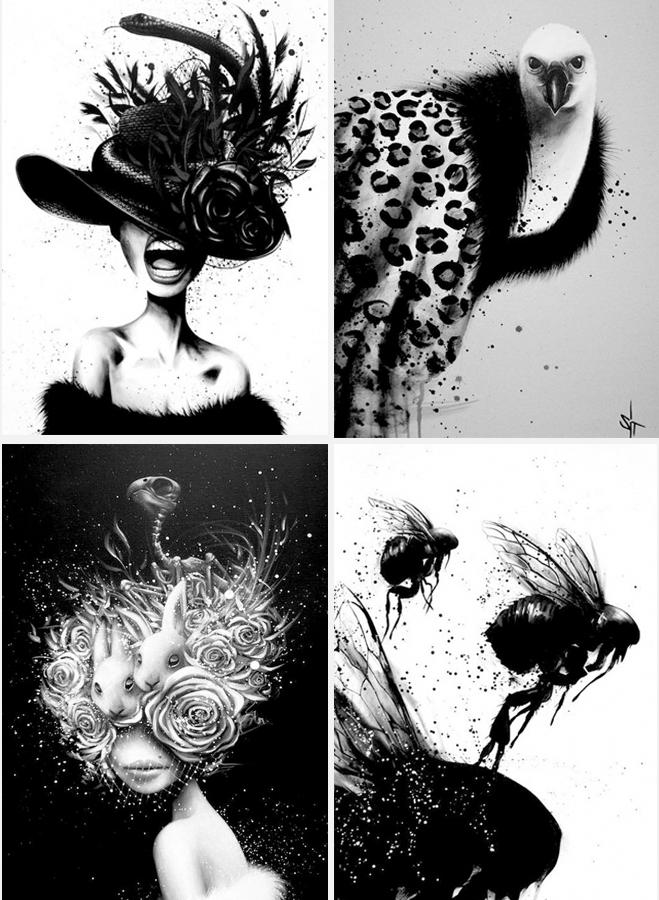 探访黑白的艺术世界:体验另类色彩格调