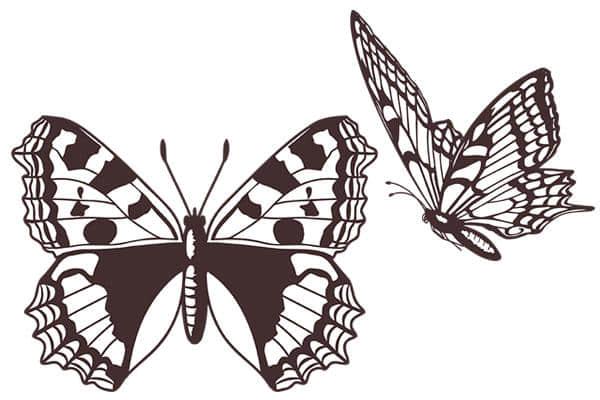 高清蝴蝶图案Photoshop笔刷素材下载
