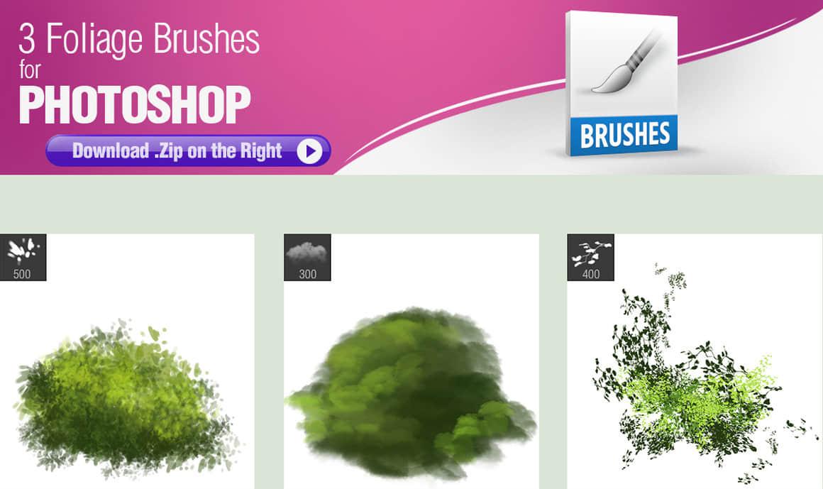 3种植物叶子数字艺术绘画PS笔刷素材
