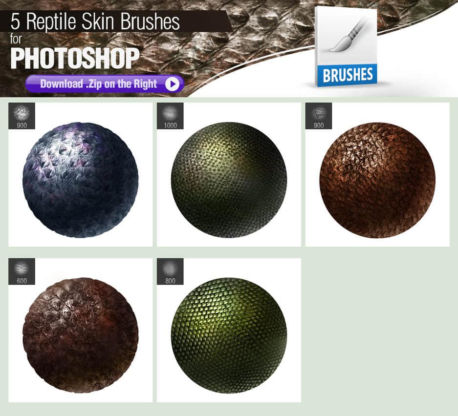 5种爬行动物皮肤纹理、鳞片、鳞甲蛇类皮肤材质Photoshop笔刷