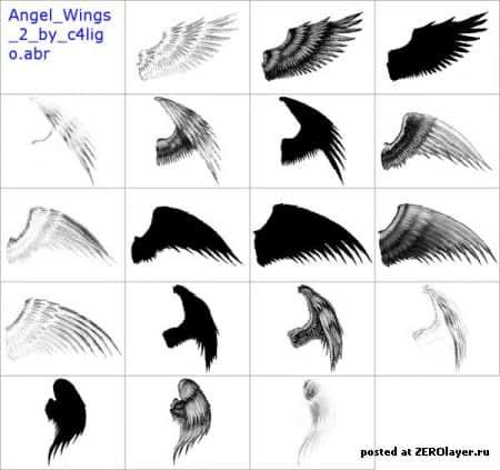 真实天使羽毛翅膀侧翼Photoshop笔刷素材