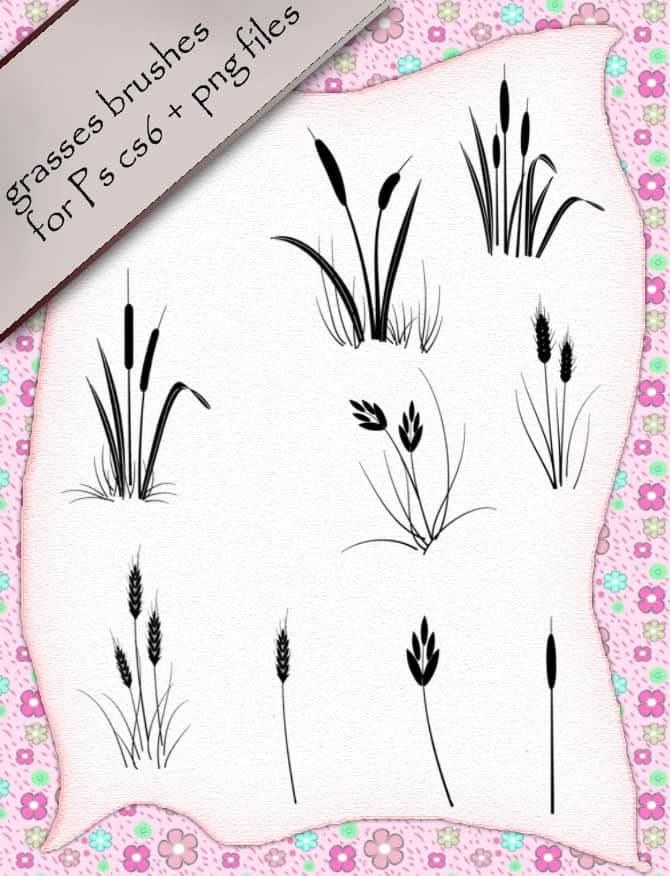 麦穗、野草图形Photoshop笔刷 麦穗笔刷 野草笔刷  plants brushes