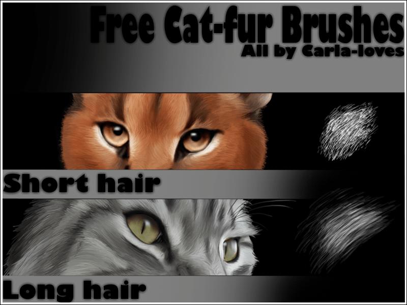 动物皮毛、毛发纹理笔触Photoshop笔刷素材下载
