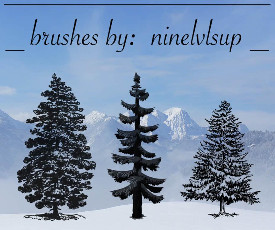 3种松树、雪松、圣诞树Photoshop笔刷下载 雪松笔刷 树木笔刷 松树笔刷 大树笔刷 圣诞树笔刷  plants brushes