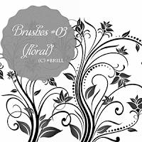 优美的植物花束图案PS笔刷下载
