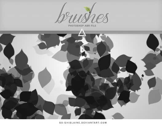 树叶、叶子图形PS笔刷下载