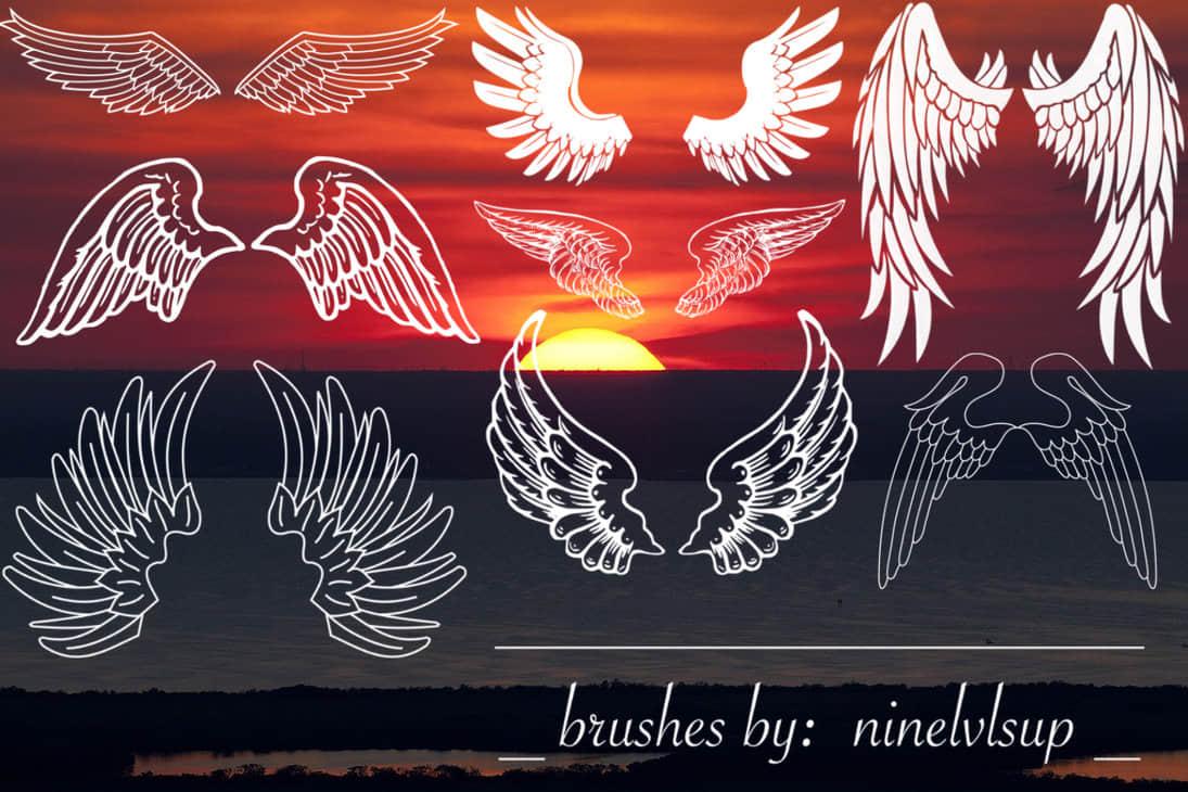 手绘可爱呆萌的天使翅膀Photoshop笔刷下载
