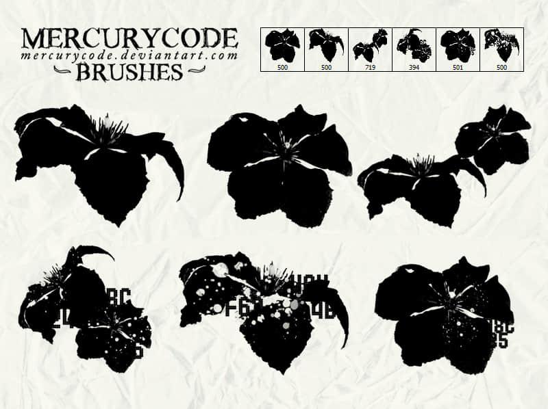 花朵、花瓣剪影PS笔刷下载 花朵笔刷 剪影笔刷  flowers brushes