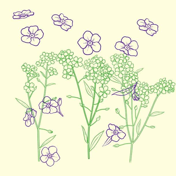 漂亮的手绘鲜花图案Photoshop花朵笔刷
